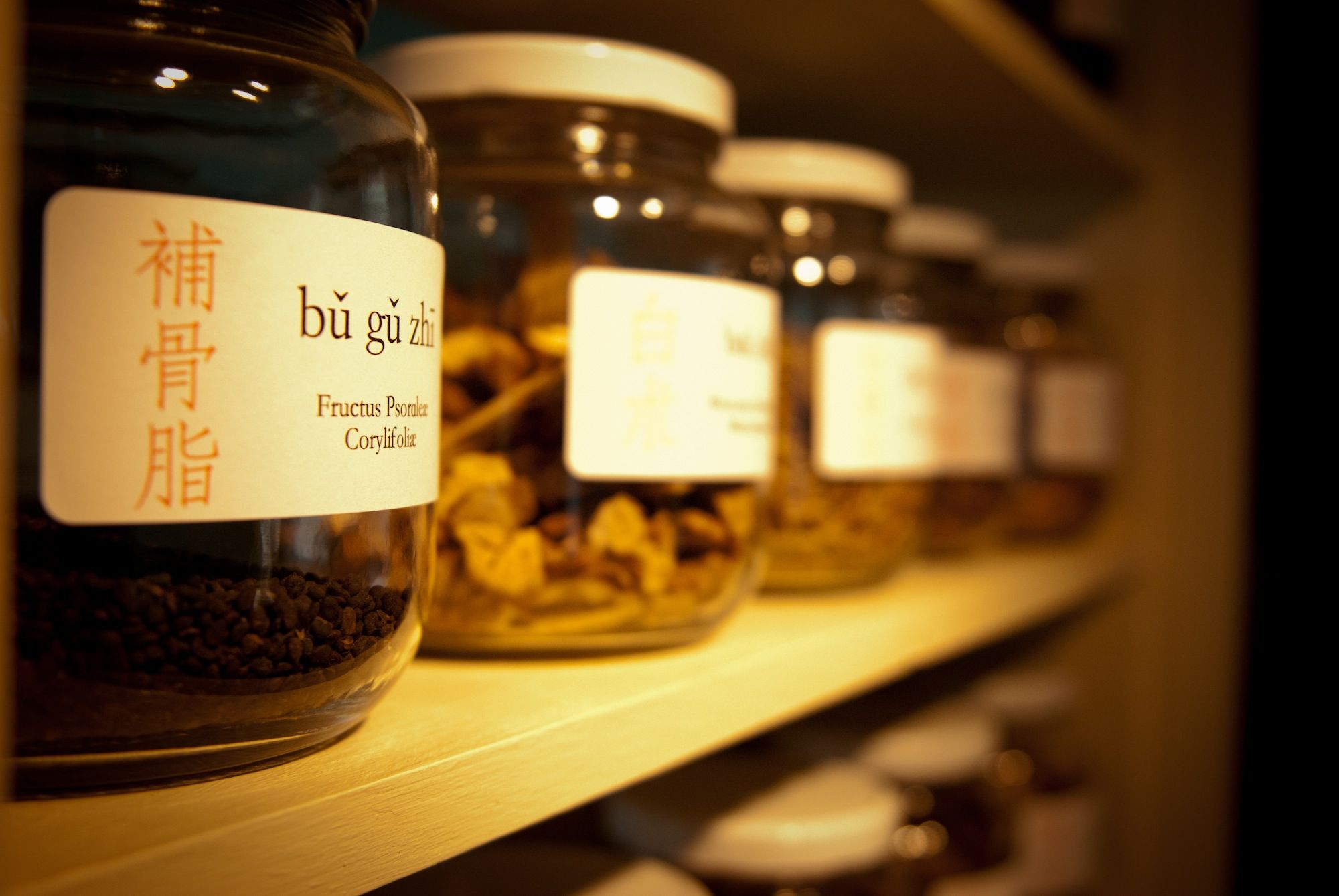 Chinese Herbal Medicine in palm harbor
