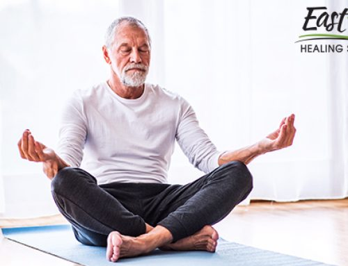 Looking to Improve Your Memory? Try Meditation Classes in Palm Harbor