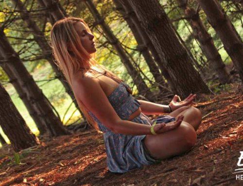 Yoga Beginners Guide: Begin Your Yoga Journey